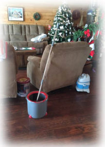 Decorations and scrubing bucket
